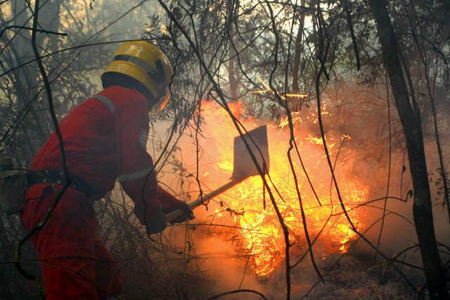 Después de 5 horas, bomberos controlaron incendio forestal al oeste de Cali