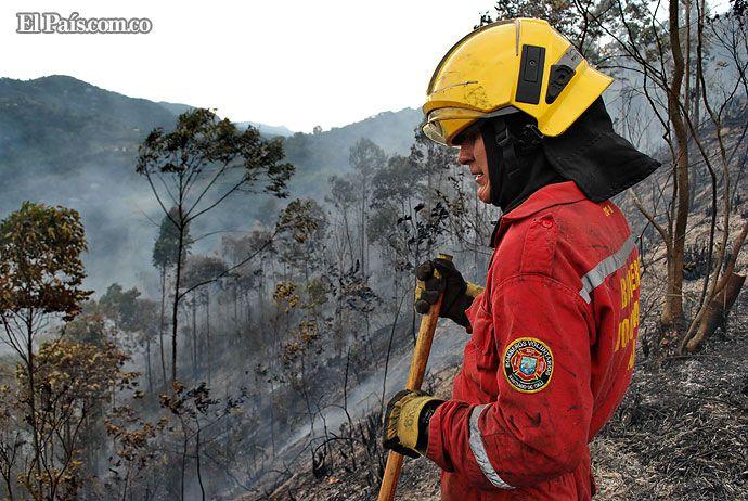 Incendios afectaron 500 mil metros cuadrados de bosques en laderas de Cali