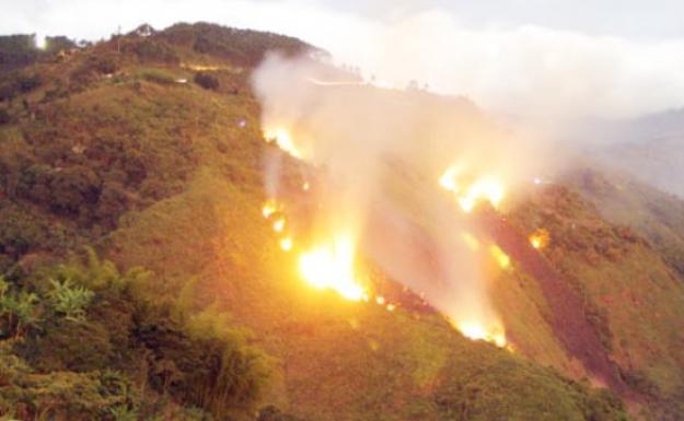 Emergencia en Nariño por incendio forestal