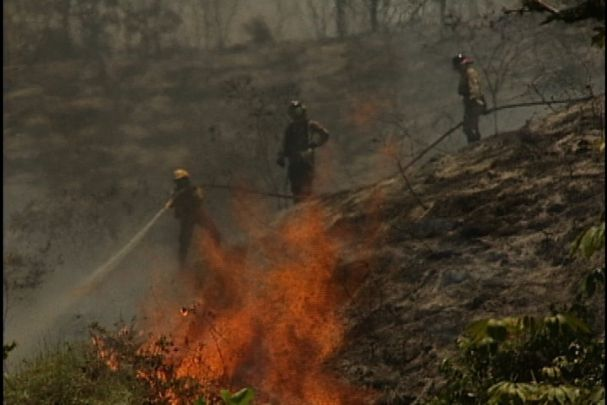 Las verdaderas razones de los incendios en laderas de Cali