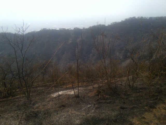 Montañas de Yumbo llevan 5 días en llamas