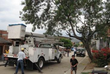 Muere menor electrocutado en un árbol en Yumbo