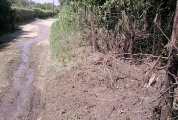 Planes terroristas de las FARC en el Cauca y Valle fueron evitados por la Fuerza de Tarea Apolo.