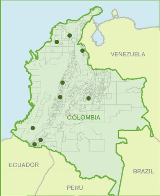 Colombia está entre los 10 mejores del ranking de la FIFA