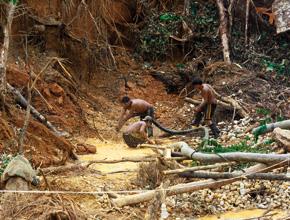 Tragedia minera en el rio Naya, mueren 5 buscadores de oro