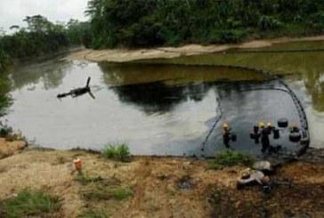 Farc dinamita de nuevo oleoducto trasandino en limites de Nariño y Putumayo