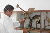 Donan piezas biológicas al Museo de Ciencias Naturales