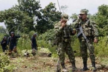 Liberan a ciudadano español en el departamento del Cauca