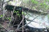 Ejercito ocupa campamentos de las Farc en el Cauca