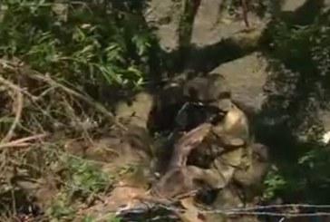Ataque de las Farc en 4 puntos diferentes del Cauca