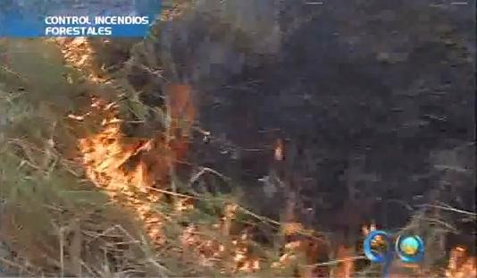 Bomberos de Cali alertan por incremento de incendios forestales