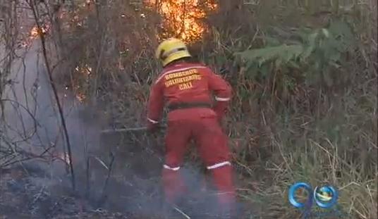Incendios forestales asedian las laderas de Cali