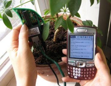 Las plantas ya pueden enviar tuits para pedir agua