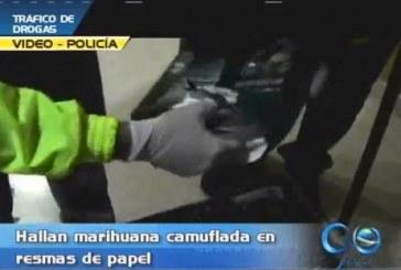 En Yumbo, hallan 358 kilos de marihuna camuflada en resmas de papel
