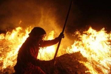 Escogerán vigías para alertar sobre incendios forestales