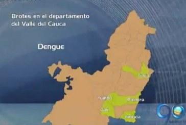 Mapa de las enfermedades que más aquejan a los vallecaucanos