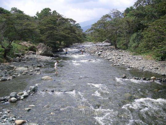 Cali celebra la Semana del Agua, del 18 al 22 de marzo