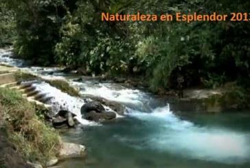 Buenaventura muestra al mundo su paraíso natural