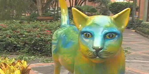 Gatas de Tejada apoyan la campaña ' Plan gatos en casa'