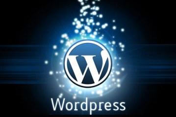 Blogueros de WordPress exigen tener mayor seguridad