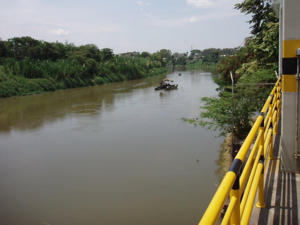 Falta de oxigeno en el agua ocasiono cierre de Puerto Mallarino