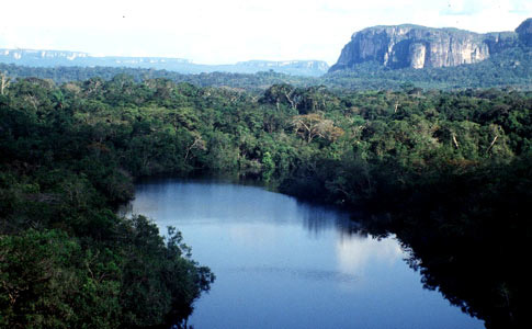 Ampliación del Parque Nacional Natural Serranía de Chiribiquete en más de un millón de hectáreas