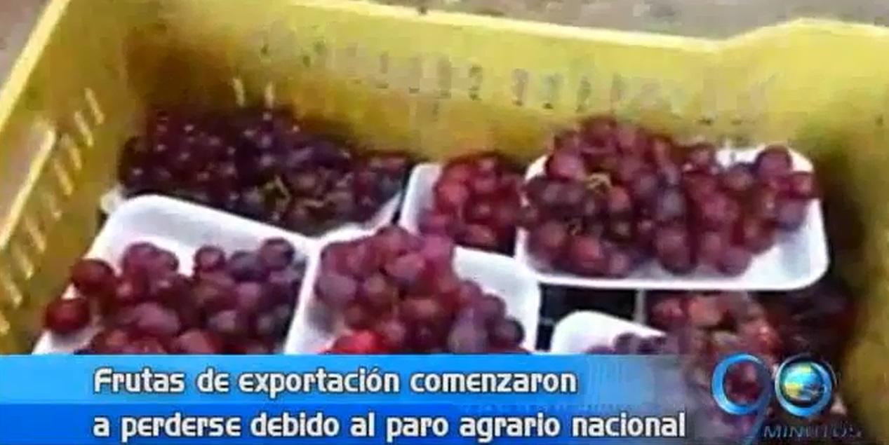 Frutas de exportación se están perdiendo por el paro agrario