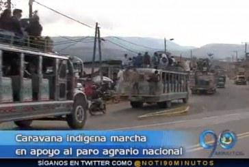Indígenas marchan hacia Popayán en apoyo al paro nacional agrario
