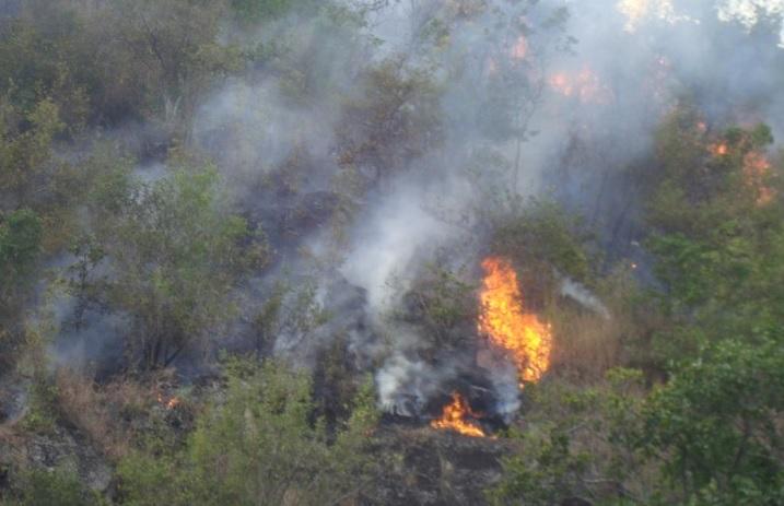 Grave incendio forestal en zona rural de Yumbo