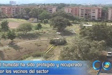 Premio cívico Por Una Ciudad Mejor: Colectivo Humedal El Limonar