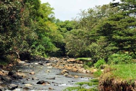 Aprobado presupuesto para proyectos ambientales 2014