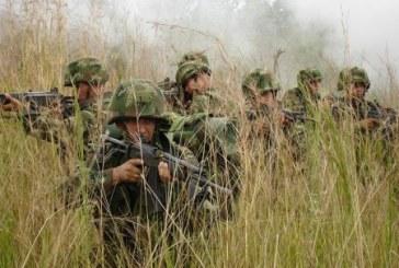 Una mujer muerta por combates entre Ejército y Farc en Cauca