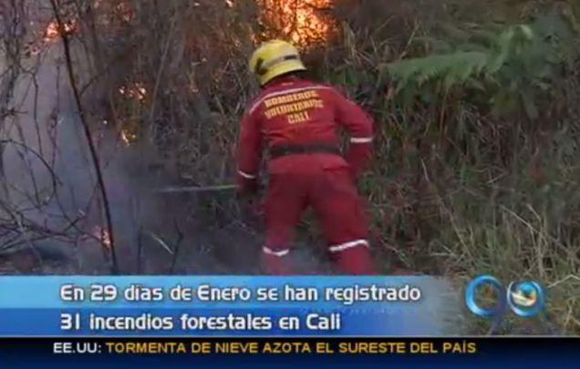 31 incendios forestales se han registrado en lo que va del año