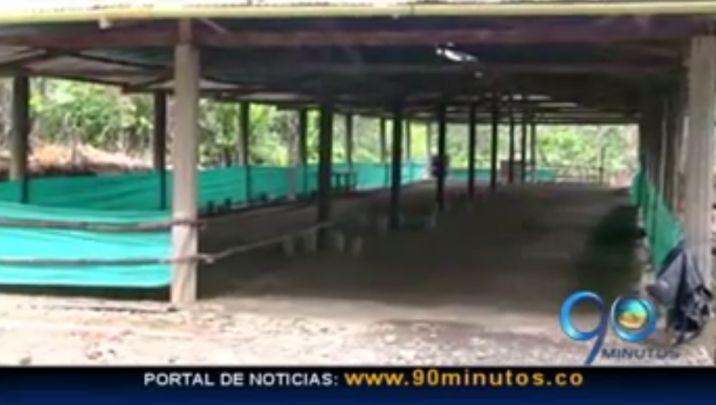 Un hombre falleció en Buenaventura después de tomar Yagé