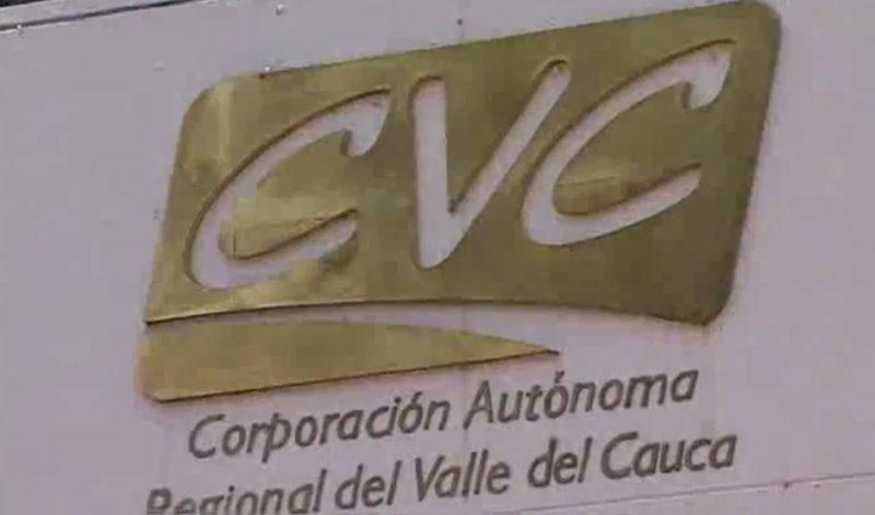 Suspendida elección de nuevo director de la CVC por tutela