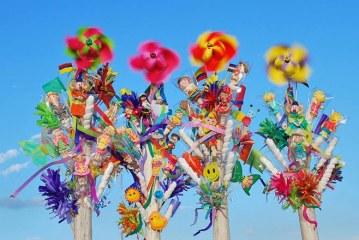Festival de Macetas será realizado por Corfecali