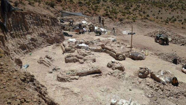 Hallan restos del dinosaurio más grande encontrado hasta ahora