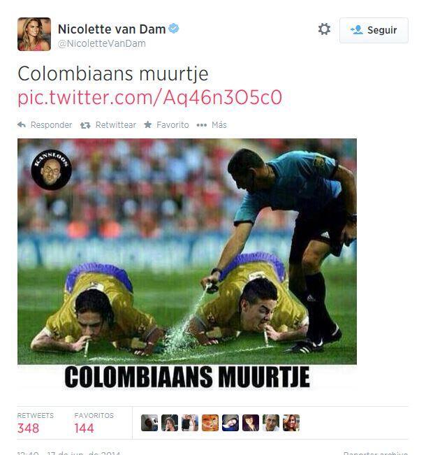 La Unicef confirmó la renuncia de Nicolette Van Dam