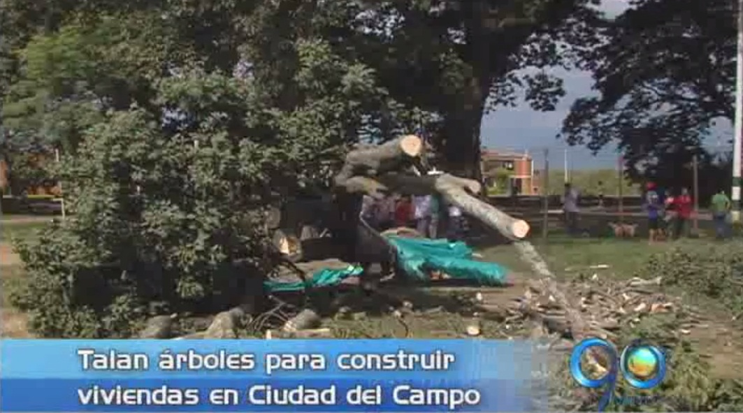 Habitantes denuncian tala de árboles en Ciudad del Campo