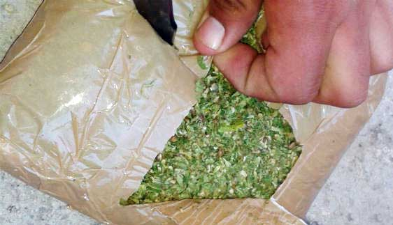 Capturado Francisco Hurtado por tráfico de marihuana en Tuluá