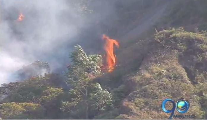 Informe Especial: Amenaza de incendios forestales en la región (2a. parte)