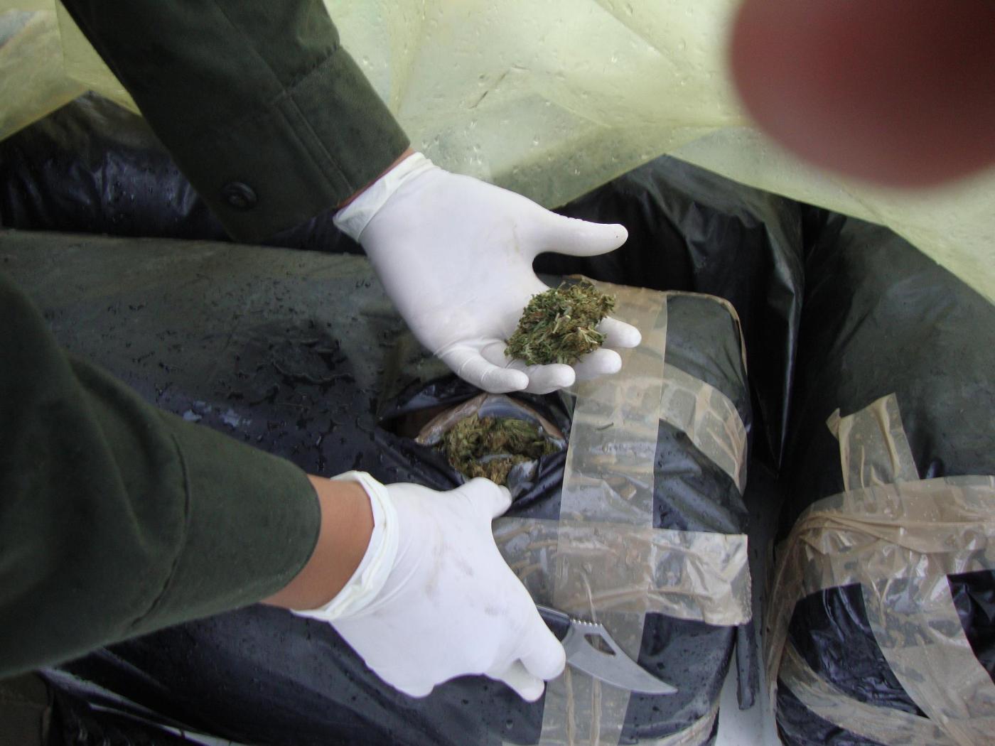 Más de tres toneladas de marihuana incautadas en el Valle