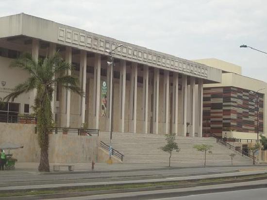 Institutos descentralizados entran en cese de actividades