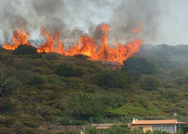 En zonas rurales se han presentado 108 incendios forestales