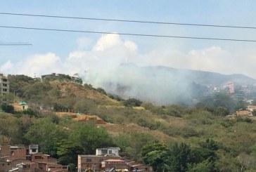 Incendio forestal en sector del Aguacatal