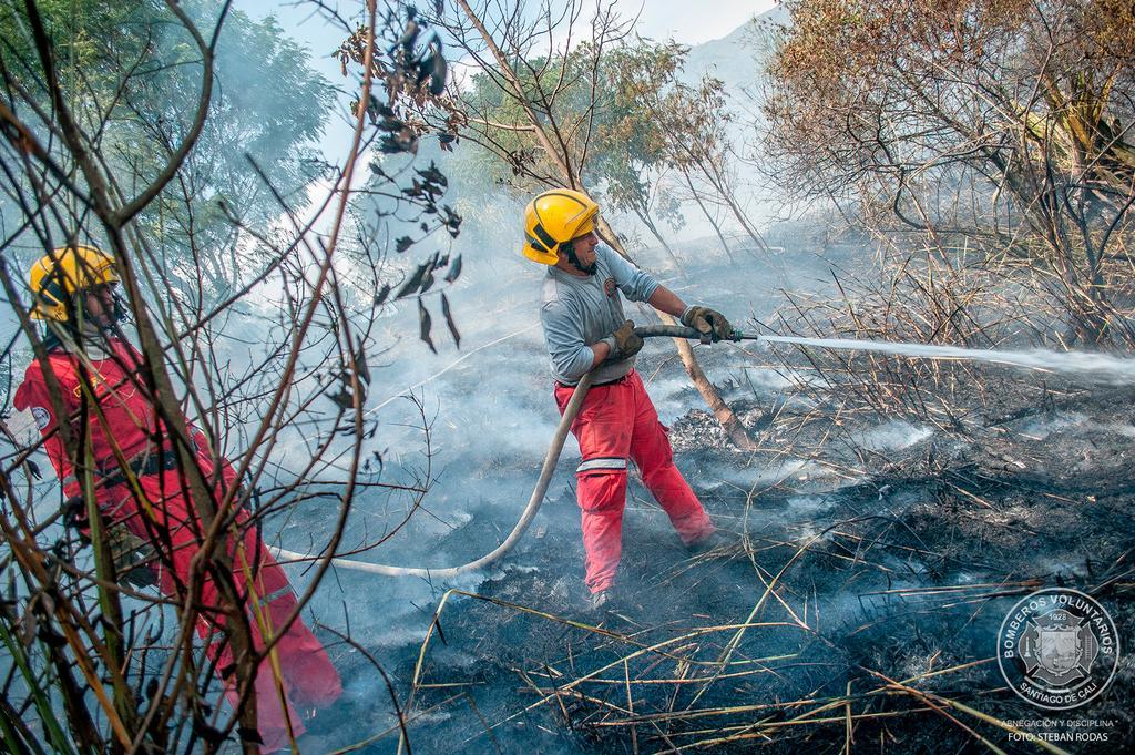 Incendios forestales consumen varias zonas de Cali