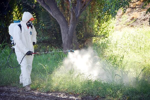 Ministerio de Salud mantendrá medidas de prevención frente al ébola
