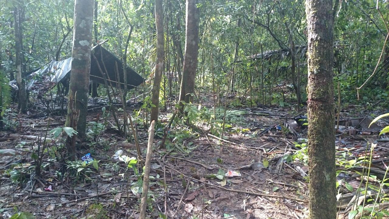 Localizados dos campamentos de las Farc en Juradó