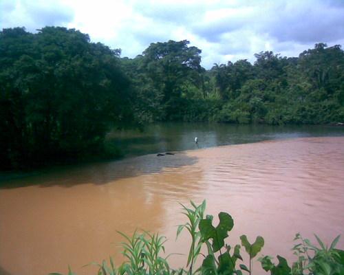 Empalizada en el río Escalerete deja a Buenaventura sin agua