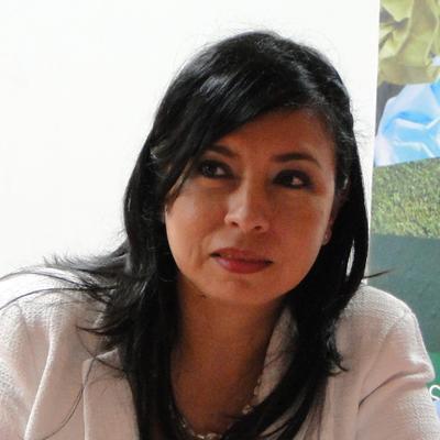 """""""En el 2015 Cali volverá a ser grande"""" Claudia Rojas"""